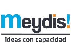 logo-meidys